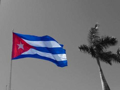 Bandera cubana y palma real (Foto: Paco Azanza Telletxiki)