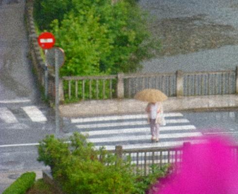 Tarde de lluvia / 01 (Fotos: Paco Azanza Telletxiki)