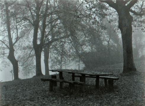 (01) Otoño y soledad (Foto: Paco Azanza Telletxiki)