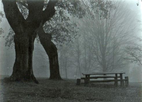(02) Otoño y soledad (Foto: Paco Azanza Telletxiki)