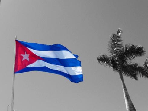 Bandera cubana y palma real, 2009 (Foto: Paco Azanza Telletxiki)