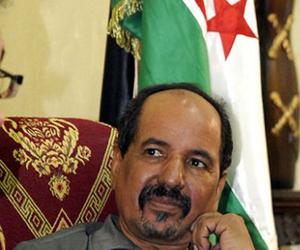 Mohamad Abdelaziz