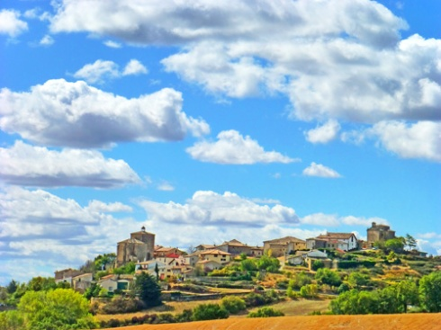 Azkona, Nafarroa, 2012 (Foto: Paco Azanza Telletxiki)
