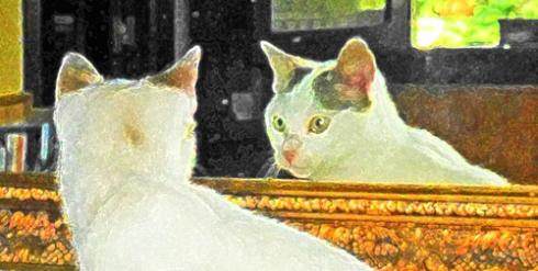 Mirándose al espejo, 2014 (Foto: Paco Azanza Telletxiki)