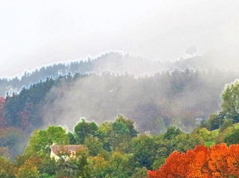Niebla y otoño, 2016 (Foto: Paco Azanza Telletxiki)