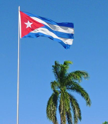 Bandera cubana y palma real, 2010 (Foto: Paco Azanza Telletxiki)